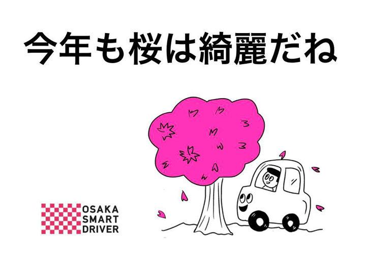 今年も桜は綺麗だね
